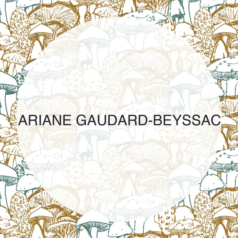 Ariane01